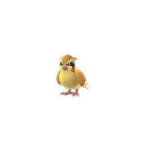 Pok 233 Mon Go Pidgey Evolution Locations Nests Moveset Pok 233 Go