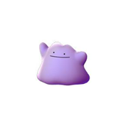 ditto pokemon go