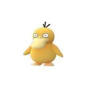 psyduck pokemon go
