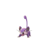 rattata pokemon go
